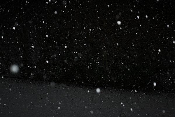 Schneeflocken mit dunklem Hintergrund